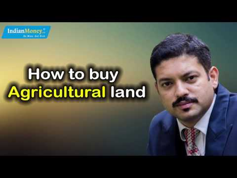 REAL ESTATE : Tips to Buy Agricultural Land