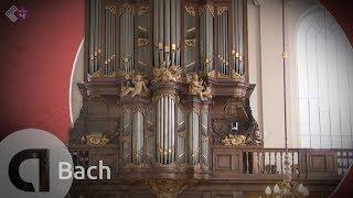 Bach Cantate BWV 4 & BWV 80 - Gesualdo Consort - Musica Amphion - Live Concert HD