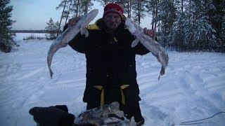 Зимняя рыбалка с ночёвкой Вот это улов