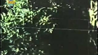 Koi Aayega Laayega Dil Ka Chain - Lata - arunkumarphulwaria