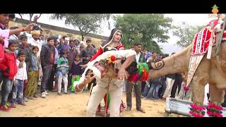 Rajasthani Rajasthani Marriage dance songs Indian Marriage Dance 2019