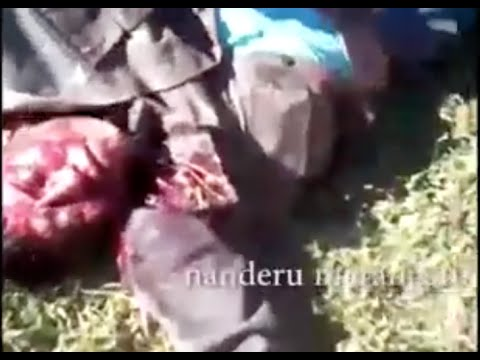 Graphic footage of attacks on Guarani people, Brazil