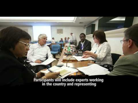 Corporate Baseline Survey: Working With FAO For A Better World