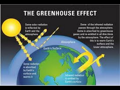 green house effect essays in hindi Green house effect and global warming essay for class we have provided variety of essays on how green house effect relates to the global slogans on hindi diwas.