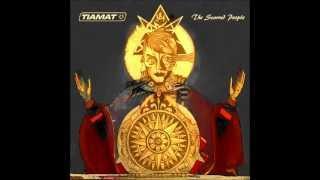 Tiamat - 06 Before Another Wilbury Dies (2012)