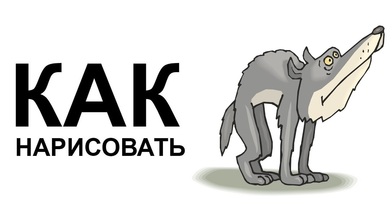 Как легко нарисовать волка