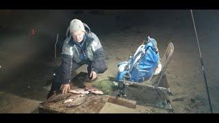 Осенняя рыбалка под мостом ФИДЕР в конце Октября 29 10 2020