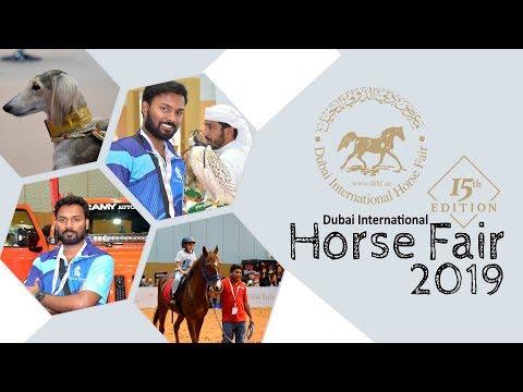 DIHF 2019 | Dubai International Horse Fair 15th Edition