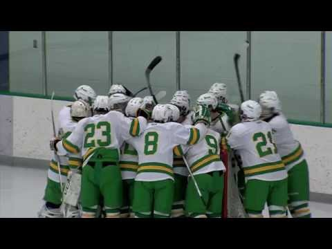 Edina vs. Holy Family Boys High School Hockey