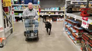 Holly with handicapped cart in Lowes