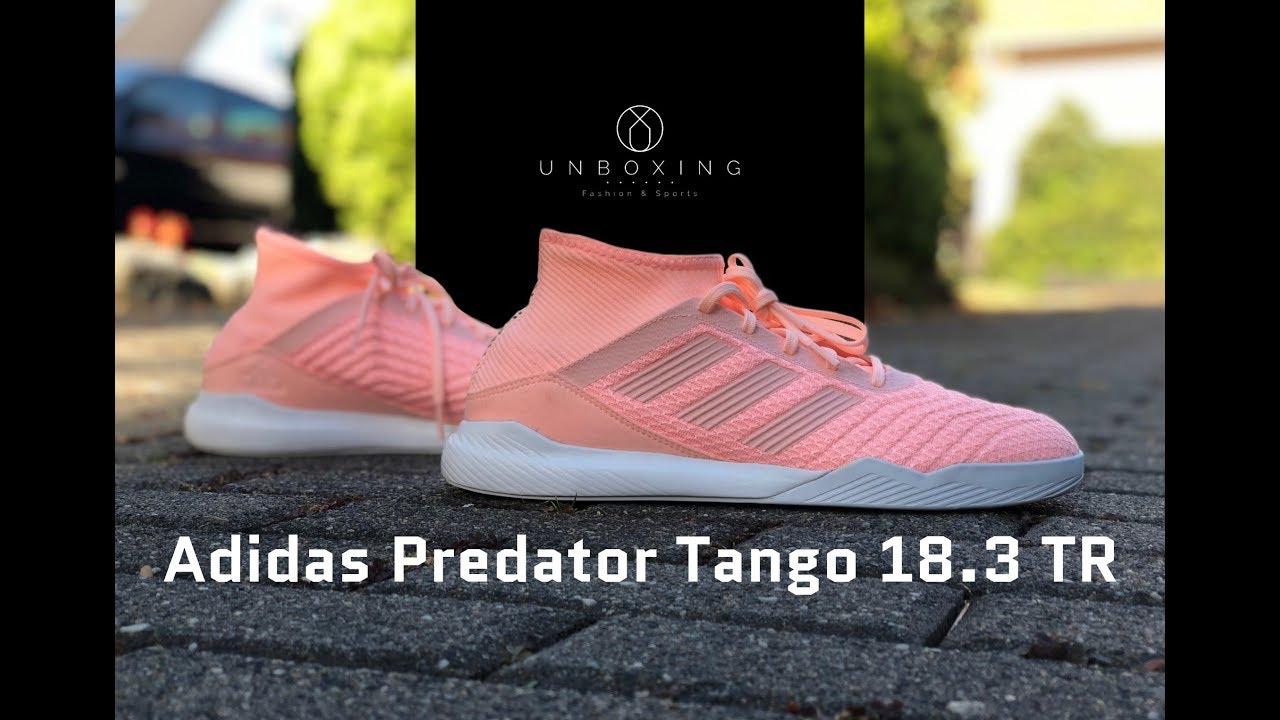 1b4326b54e9 Adidas Predator Tango 18.3 TR  Spectral Mode Pack