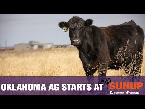 The Oklahoma Gold Program (7/21/18)