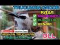 Burung Trucukan Full Isian Mewah  Mp3 - Mp4 Download