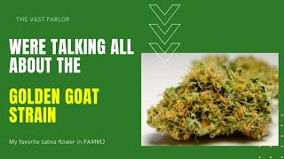 Golden Goat Strain from GTI / Rythm review PA MMJ