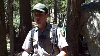 New Gun Laws in National Parks Yosemite July 16 18, 2010