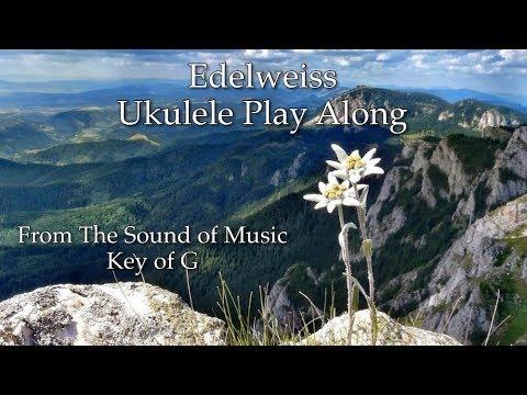 Edelweiss (Sound of Music) Ukulele Play Along