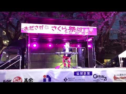 刈川圭祐さん「サライ(カバー)」〜おださがさくら祭り
