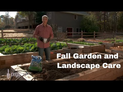What to Do in Your Garden and Landscape in Fall