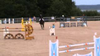 Horsejumping Sweden Quick Step HZ helena persson