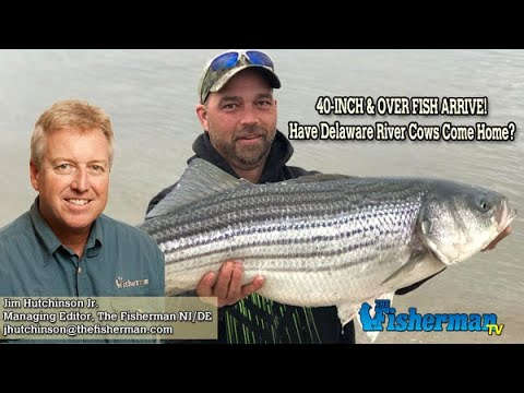 April 4, 2019 New Jersey/Delaware Bay Fishing Report With Jim Hutchinson, Jr.