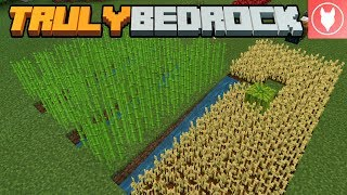 Truly Bedrock S1 : E1 - Getting Started!