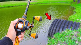 Catching GIANT Bass in SMALL Ponds (Bed Fishing)