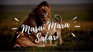 KENYA TRAVEL VLOG   Part 3 (Masai Mara) 2019