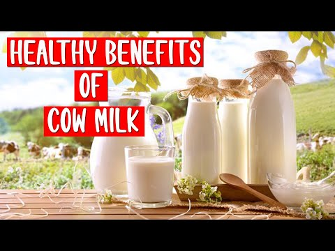 How To Lose Fat Fast – Healthy Benefits Of Cow Milk