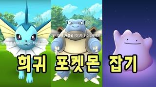 포켓몬고 낙성대 거북왕 샤미드 독파리 니드킹 야도란 메타몽 미뇽 잡았다! | 훈토이TV