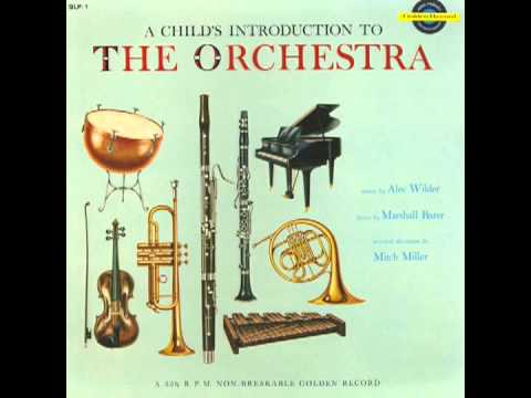 A Child's Introduction to the Orchestra