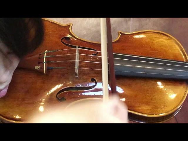 Ifstrings Master Build deluxe Wood #360 Guarneri del Gesu 1740
