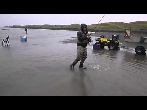 Coho Silver Salmon Spin Fishing on the Tsiu River in Alaska