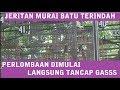 Jeritan Murai Batu Terindah Gacor Dan Ngeplong Di Piala Raja   Mp3 - Mp4 Download