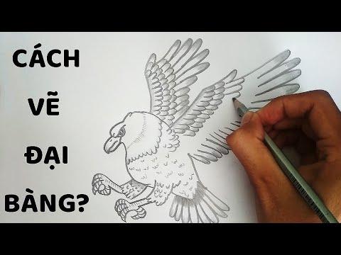 Vẽ Đại Bàng bằng bút chì đẹp tuyệt vời  – How to draw a Eagle