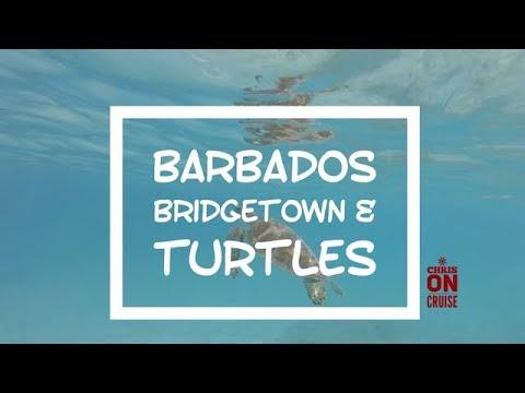 Auf Kreuzfahrt … Barbados, Bridgetown City und Schildkröten, Mein Schiff, Karibik