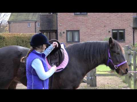 How to saddle your horse | PONY Magazine