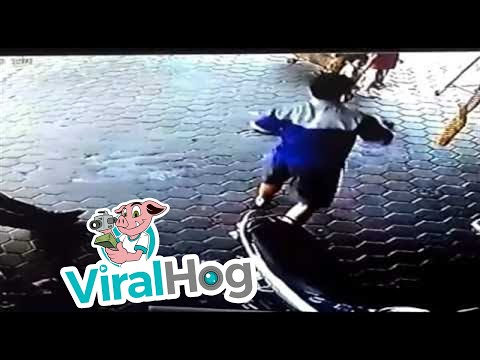 Superhero Dad Saves His Children with Lightning Fast Response || ViralHog