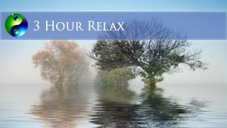 Relaxing Music: Yoga Music Playlist; New Age Music; Music for relaxation; Meditation Music  🌅549