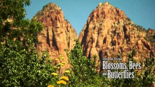 America The Beautiful: Blossoms, Bees and Butterflies