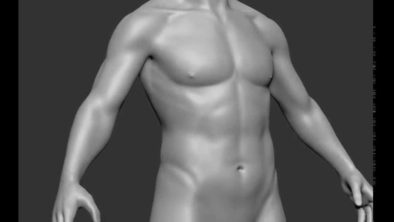 Zbrush 5h Male Anatomy Study - YouTube