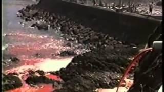 ЗЕМЛЯНЕ  Легендарный фильм 2005 года, запрещённый во многих странах