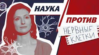 Вера Толченникова против мифов о нервных клетках // Наука против