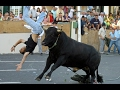 Dangerous Bull Fight Accidents Compilation 2017 Lucky And Funny People Fail Video Clips video
