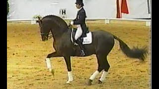 Donnerhall - Legendary oldenburg stallion (Damon Hill, Digby, Donnperignon)