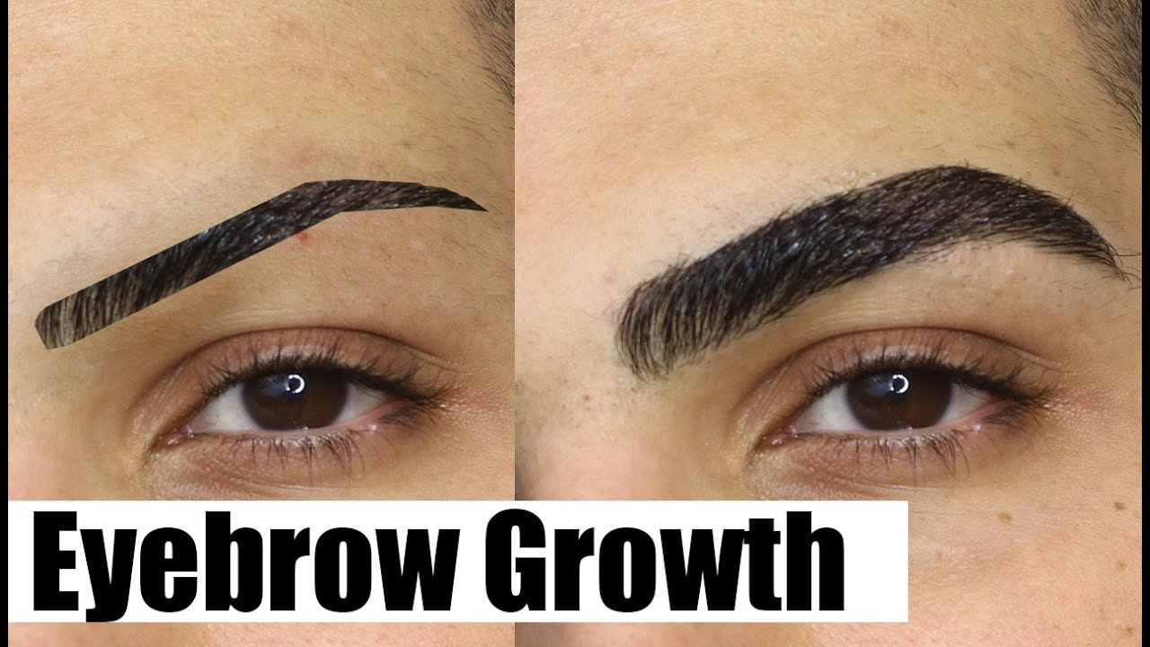 How To Grow Your Eyebrows Out Fast Thick Natural Youtube