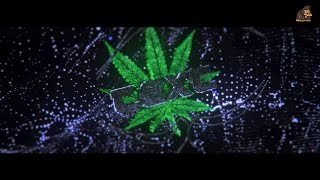 Sync Weed Intro Template #002 by MonkiiArtZ [C4D&AE]