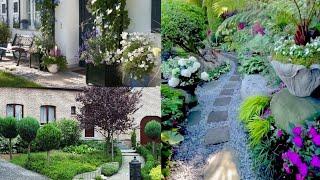 Дизайн красивого двора частного дома