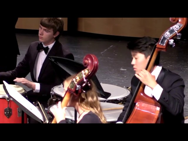 07 DHS Chamber Orchestra Libertango Piazzolla