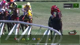 Vidéo de la course PMU PREMIO MEGA