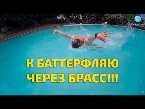 Техника плавания баттерфляем: хочешь освоить, учи брасс!!!
